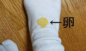 生卵と靴下